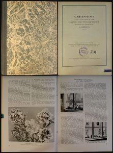 Gartenflora Monatsschrift für Garten- und Pflanzenkunde 1935 Botanik Gartenbau