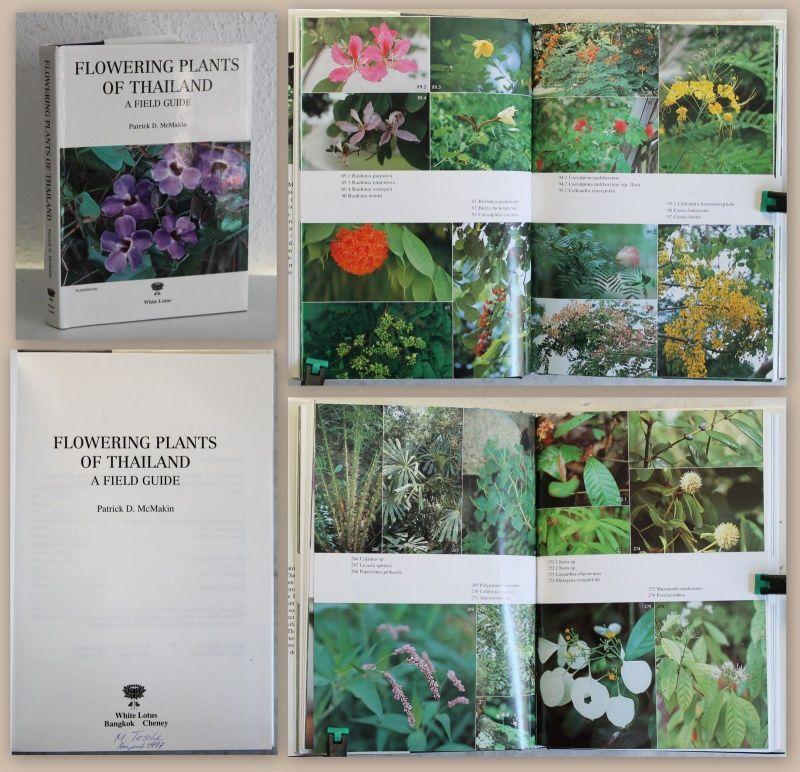 McMakin Flowering Plants of Thailand a Field Guide 1993 Botanik illustriert xz