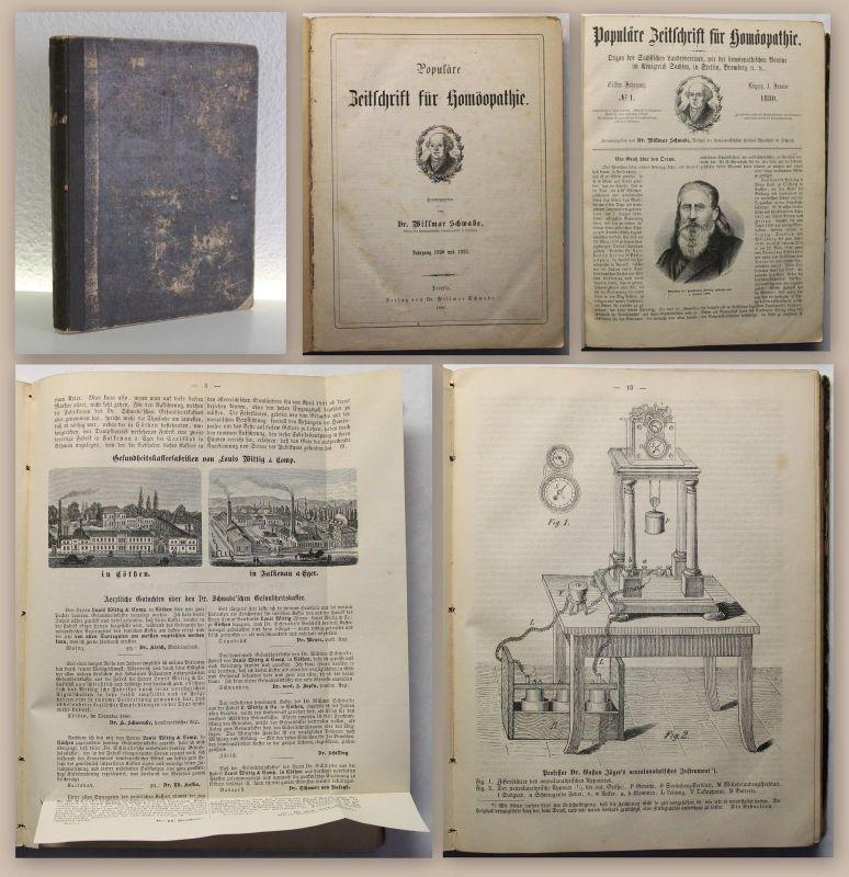 Schwabe Popul. Zeitschrift für Homöopathie 1880/81 - 11.+12. Jg. Medizin xz