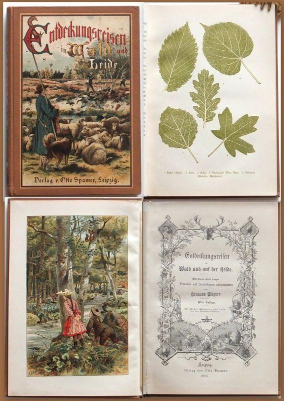 Wagner Entdeckungsreisen im Wald und Heide Spamer Jugendbuch 1903 Top Zustand