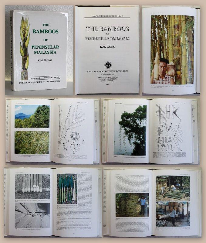 Wong The Bamboos of Peninsular Malaysia 1995 Dendrologie Baumkunde Bambus xz