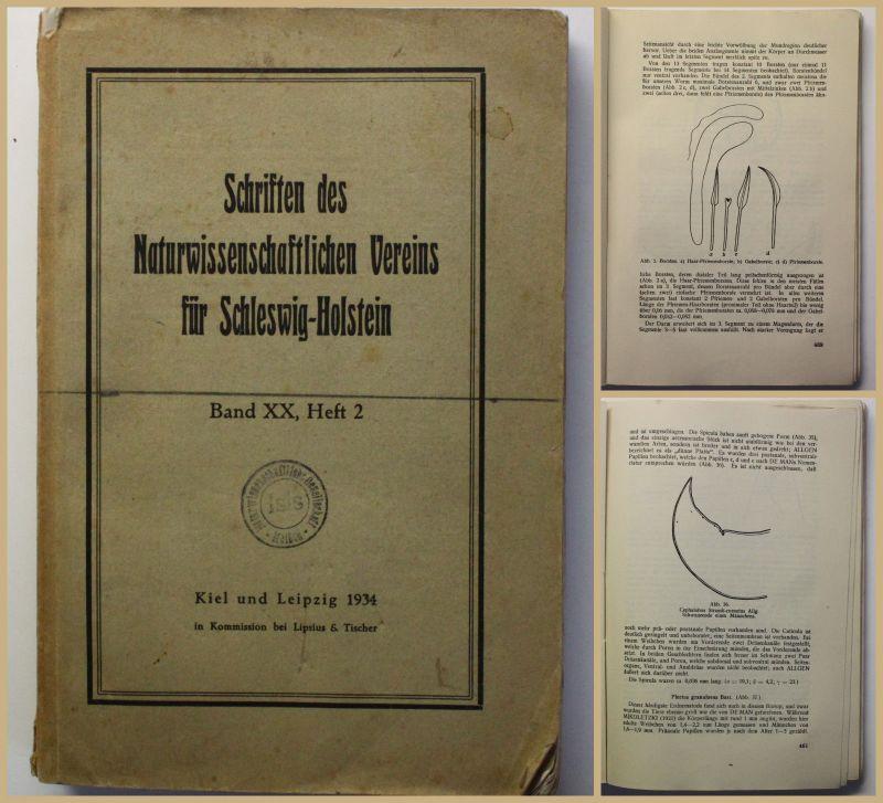 Schriften des Naturwissenschaftlichen Vereins für Schleswig Holstein 1934 xy