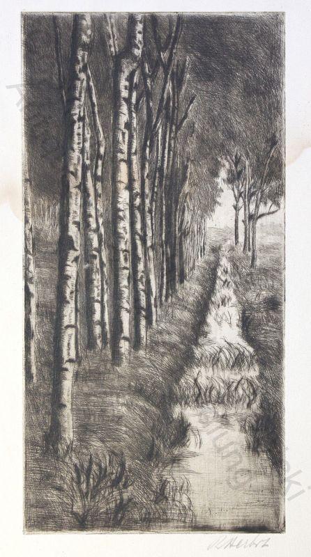 Orig. Radierung Herbst um 1950 Birkenwald mit Bachlauf aus der Galerie Joh. Kühl