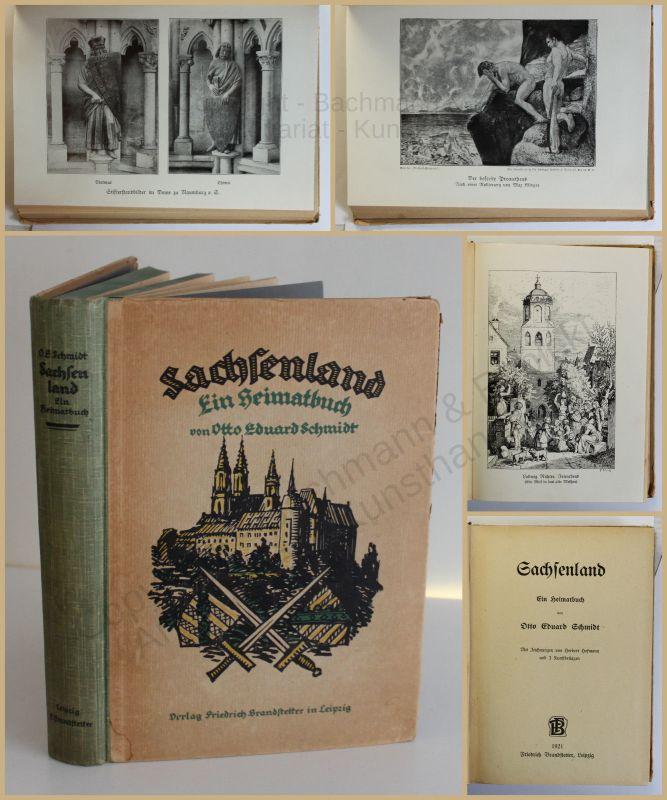 Schmidt Sachsenland 1921 Landeskunde Ortskunde Geografie Geographie Heimat xy