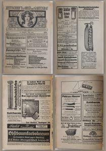 Sächsischer Landes-Obstbauverein: Zeitschrift für Obst- und Gartenbau 1919-1922
