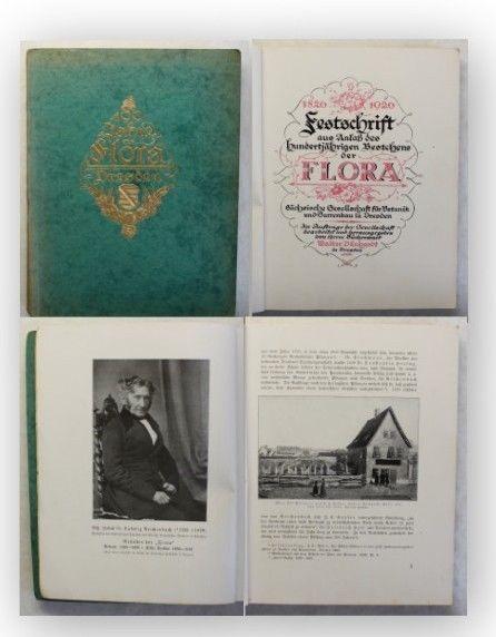 Dänhardt Festschrift 100 Jahre Flora Dresden 1926 Botanik Sachsen Gartenbau xy