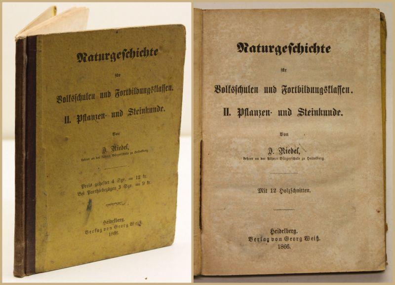 Riedel Naturgeschichte für Volksschulen II. Pflanzen-& Steinkunde 1866 Wissen sf