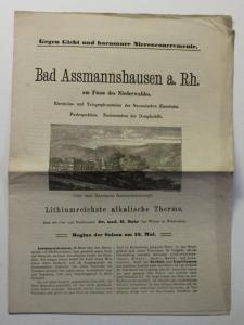Original Prospekt Bad Assmannshausen Rhein Niederwald um 1880 Hessen Rüdesheim
