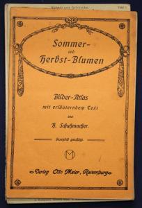 Schuhmacher Sommer- & Herbst-Blumen Bilder-Atlas um 1900 Natur Leporello sf