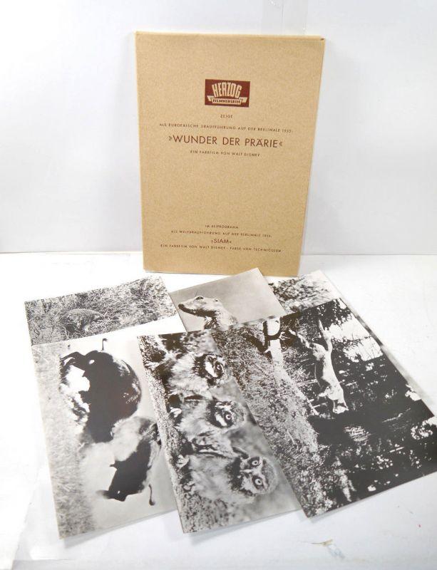 Pressemappe WUNDER DER PRÄRIE Siam Disney Filmfestspiele Berlinale 1955 (B2)