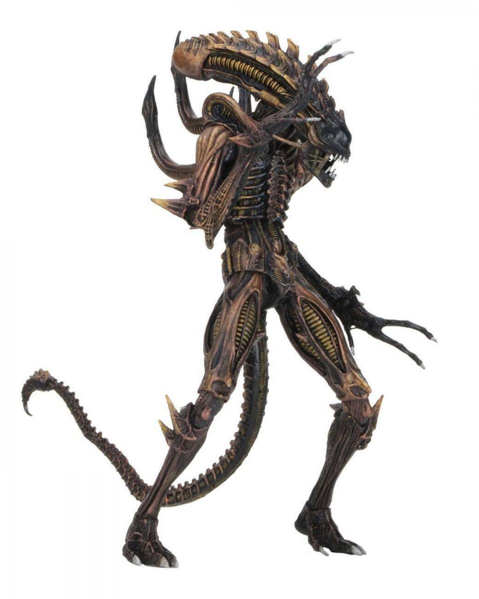 ALIENS Series 13   Scorpion Alien   NECA Neu (L) 1