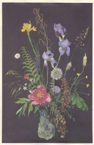 Blumen (auf Seide gedruckt)