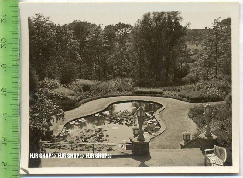 Essen, Grugapark, ca. 1930/1940,  Sammelfoto 9,2 x 7 cm,  Staudenlichtung mit Warmwasserbecken