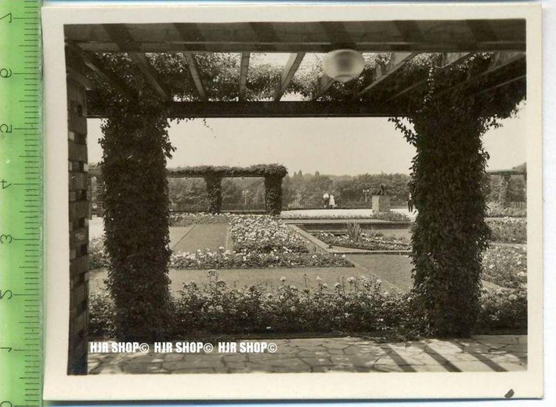 Essen, Grugapark, ca. 1930/1940,  Sammelfoto 9,2 x 7 cm,  Pergolagarten