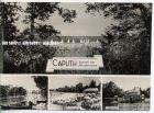 """Bild zu """"Caputh""""  um 1950..."""