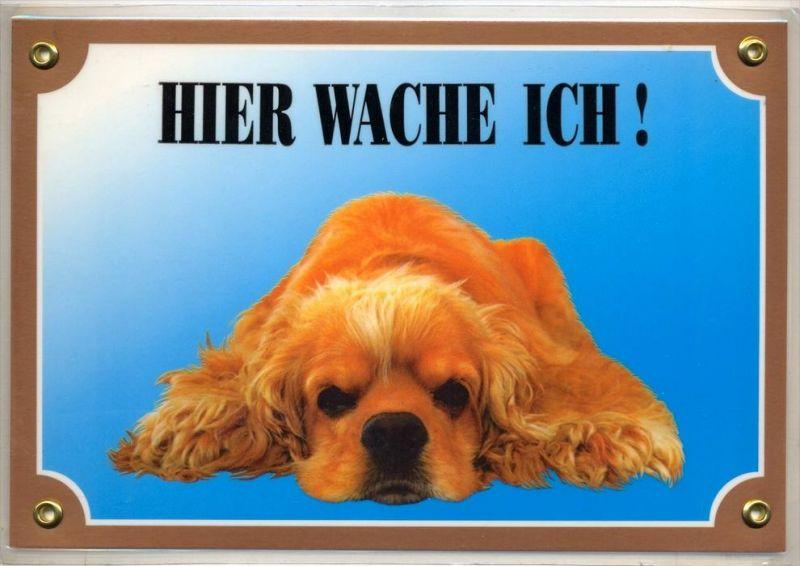 Hunde – Warnschilder AMERICAN COCKER 21 x 14,5 cm, laminiert Zustand: Neu
