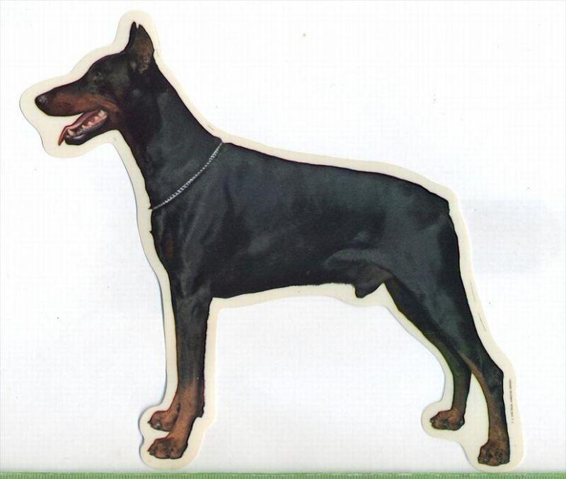 2 Hunde – Aufkleber DOBERMANN - LINKS  groß: 14 x 15  cm, l Zustand: Neu