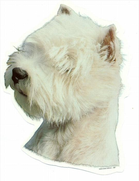 2 Hunde – Aufkleber WEST HIGHL. TERRIER - links  groß: 14 x 15  cm,  Zustand: Neu
