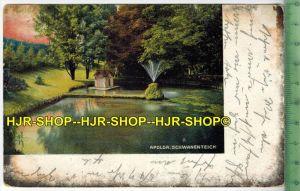 Apolda Schwanenteich 1911- Verlag: C.F. Wiedemann, Roda,  POSTKARTE-mit Frankatur, mit  Stempel, APOLDA  11.11.11  gelau