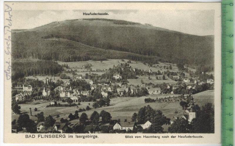 Bad Flinsberg 1926 Verlag: Niepel, Friedeberg., Postkarte ohne Frankatur  und Stempel, BAD FLINSBERG 12.6. 1926 MIT BEFÖ