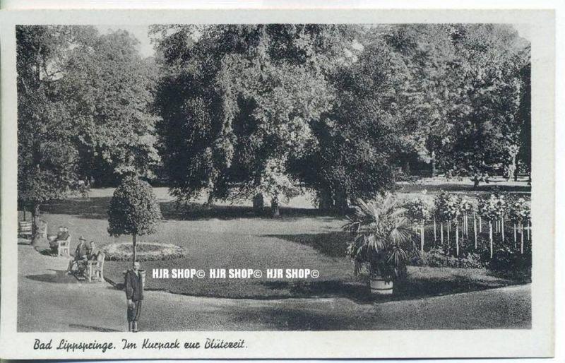 """""""Bad Lippspringe. Im Kurpark zur Blütezeit""""   um 1910/1920,  Ansichtskarte, ungebrauchte Karte"""