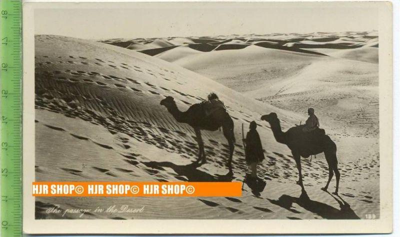 """""""Karavane"""", um 1930/1940,  Ansichtskarte  ungebrauchte Karte"""