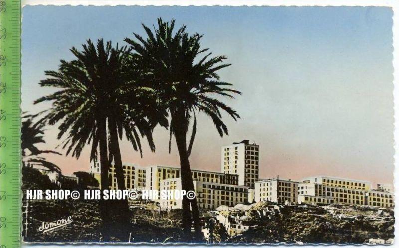 """""""Alger"""",   Ansichtskarte  ungebrauchte Karte"""