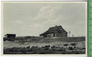 Tr. Üb. Pl. Sennelager-Diebeshof um 1930/1940 Verlag: Driesen, Berlin , POSTKARTE Erhaltung: I-II Karte wird in Klarsich