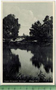 Truppen-Übungsplatz Sennelager, Albedyll-Turm um 1930/1940 Verlag: Driesen Nr. 83035, Berlin, POSTKARTE Erhaltung: I-II
