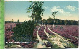 """""""Ijssenstein, Jac. Oskam, Sigarenfabriek, Lüneburger Heide"""" um 1920/1930 Ansichtskarte, ungebrauchte Karte"""