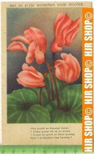 """""""Blumen"""" um 1950/1960, Ansichtskarte  ungebrauchte Karte"""
