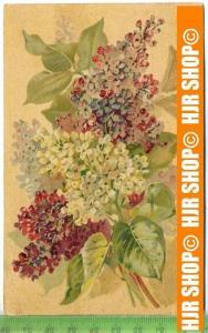 """""""Blumenstrauß""""  um 1900/1910  , Ansichtskarte mit Frankatur, mit Stempel,"""