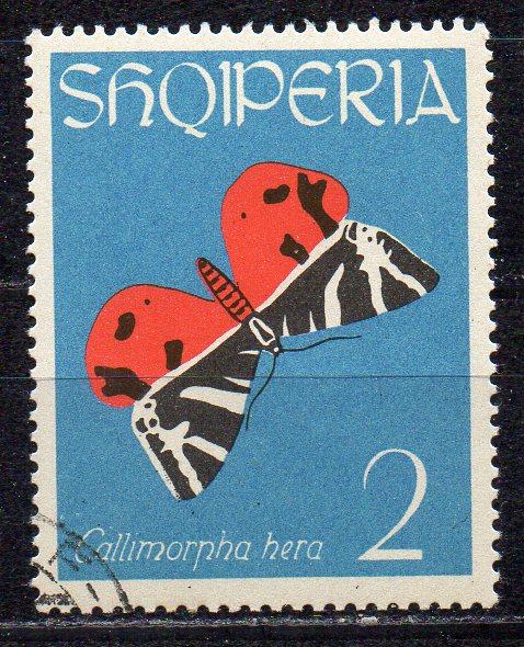 Albanien, Mi-Nr. 774 gest., Schmetterling