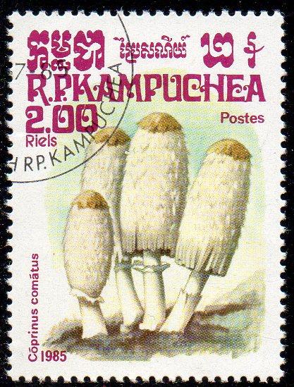 Kambodscha, Mi-Nr. 653 gest., Pilze - Schopftintling