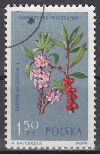 hc000.405 - Polen Mi.Nr. 1331 o