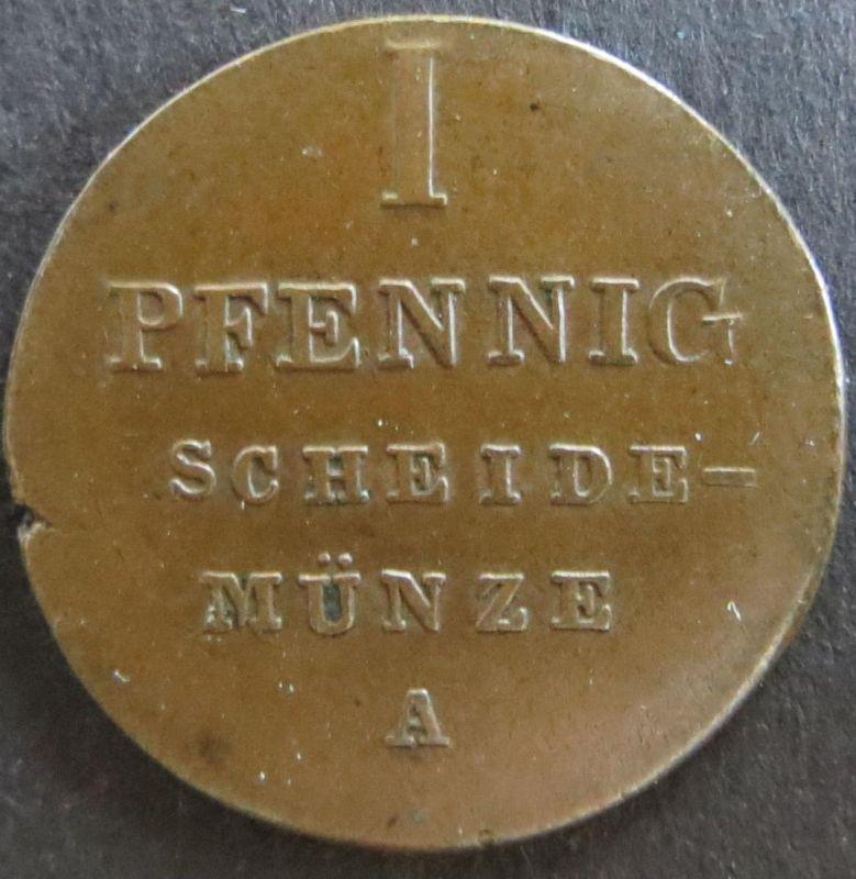 Münze Hannover 80 - 1 Pfennig 1833 A Scheidemünze Spiegelmonogramm Kupfer ss