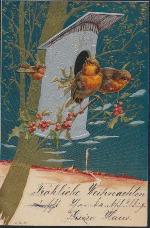 Ansichtskarte Prägekarte Künstler München 1901 Vögel Mistelzweig Weihnachten 0