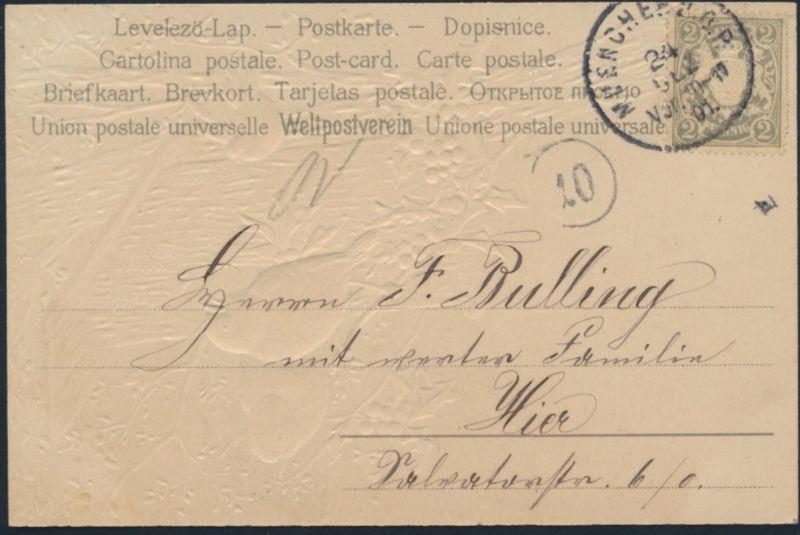 Ansichtskarte Prägekarte Künstler München 1901 Vögel Mistelzweig Weihnachten 1