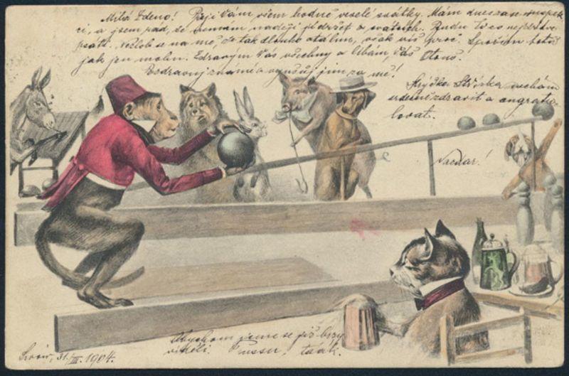 Ansichtskartel Kegeln Tiere personifizierte Schweine Affen Katzen Esel Bären