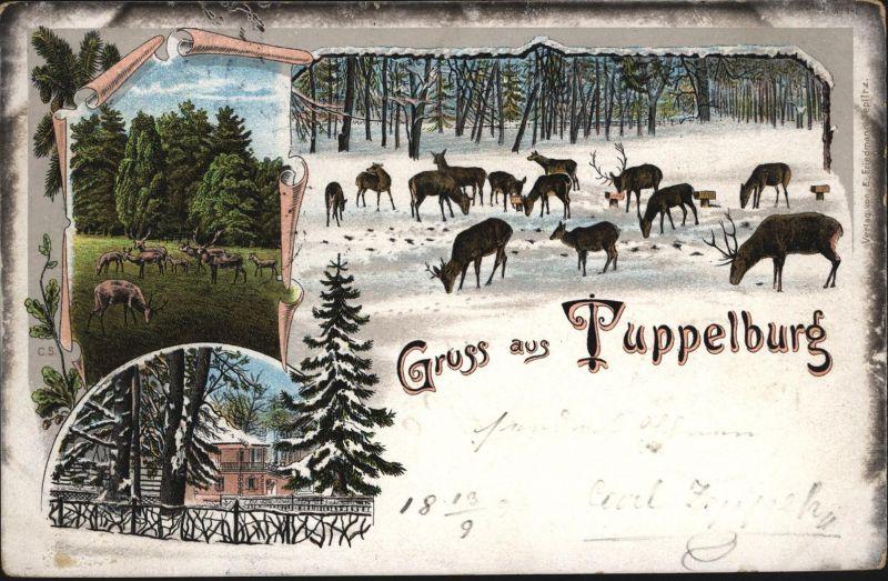 Ansichtskarte Tuppelburg Litho bei Teplitz Zámek Dvojhradí Tschechien Tiere Wild