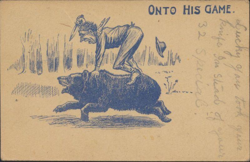 Ansichtskarte Künstler Game Spiel USA ab West Milan 1906 Raubtiere Tiere Bären