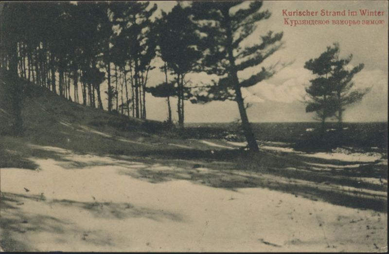 Ansichtskarte Lettland Kurischer Strand Feldpost Nr. 168 n. Altona Ottensen