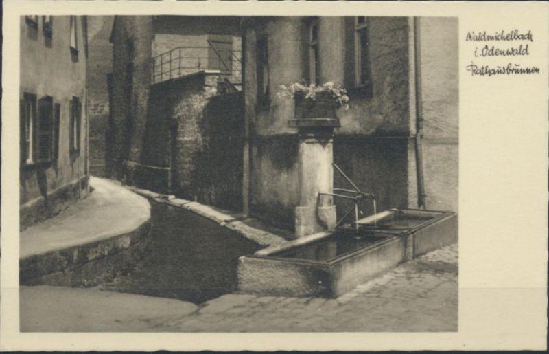 Ansichtskarte Foto Waldmichelbach im Odenwald Rathausbrunnen