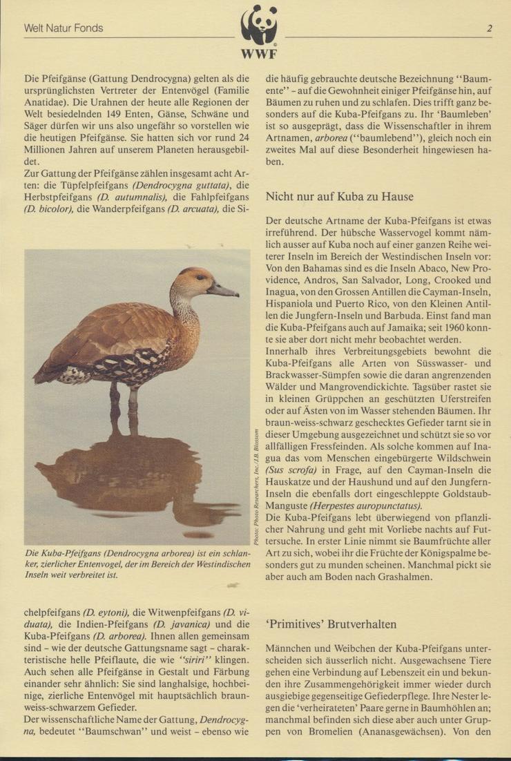 WWF Bahamas 672-675 Tiere Vögel Pfeifgans kpl. Kapitel bestehend 1