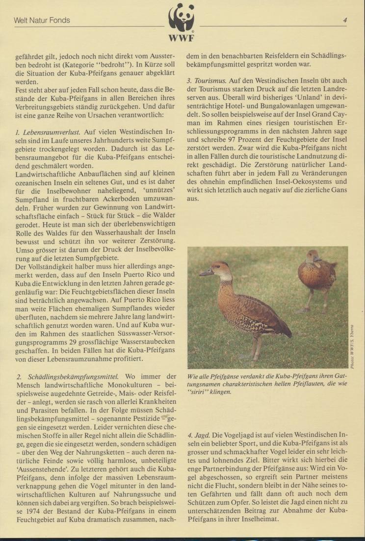 WWF Bahamas 672-675 Tiere Vögel Pfeifgans kpl. Kapitel bestehend 3