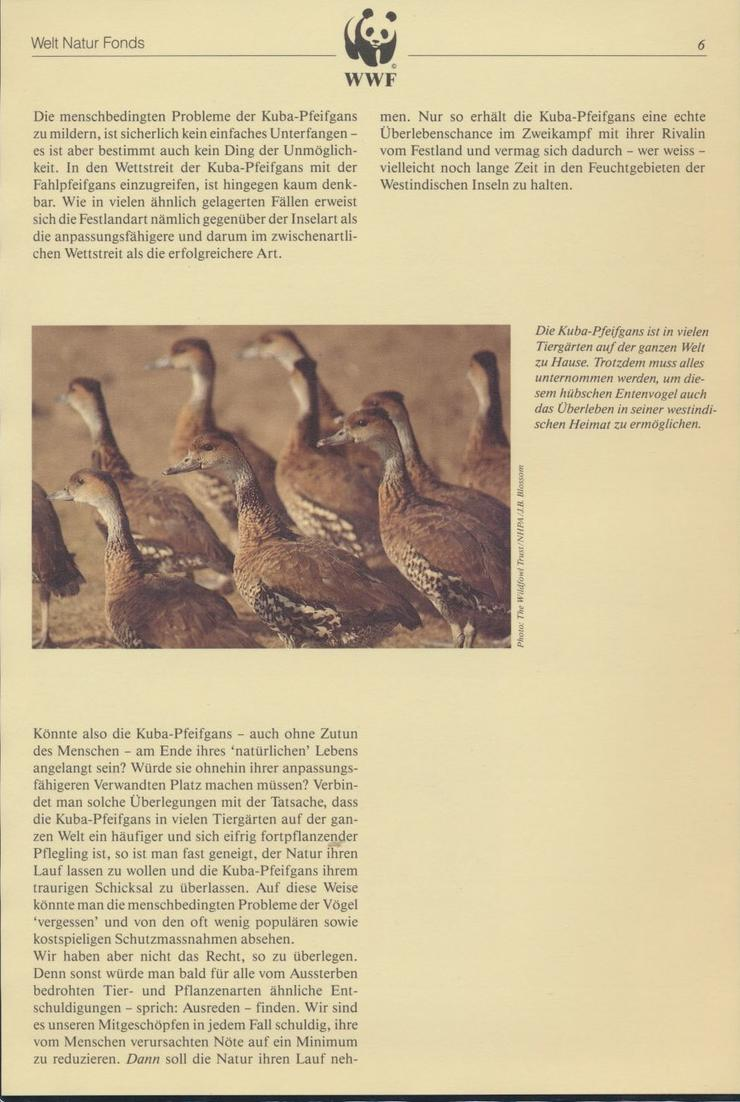 WWF Bahamas 672-675 Tiere Vögel Pfeifgans kpl. Kapitel bestehend 5