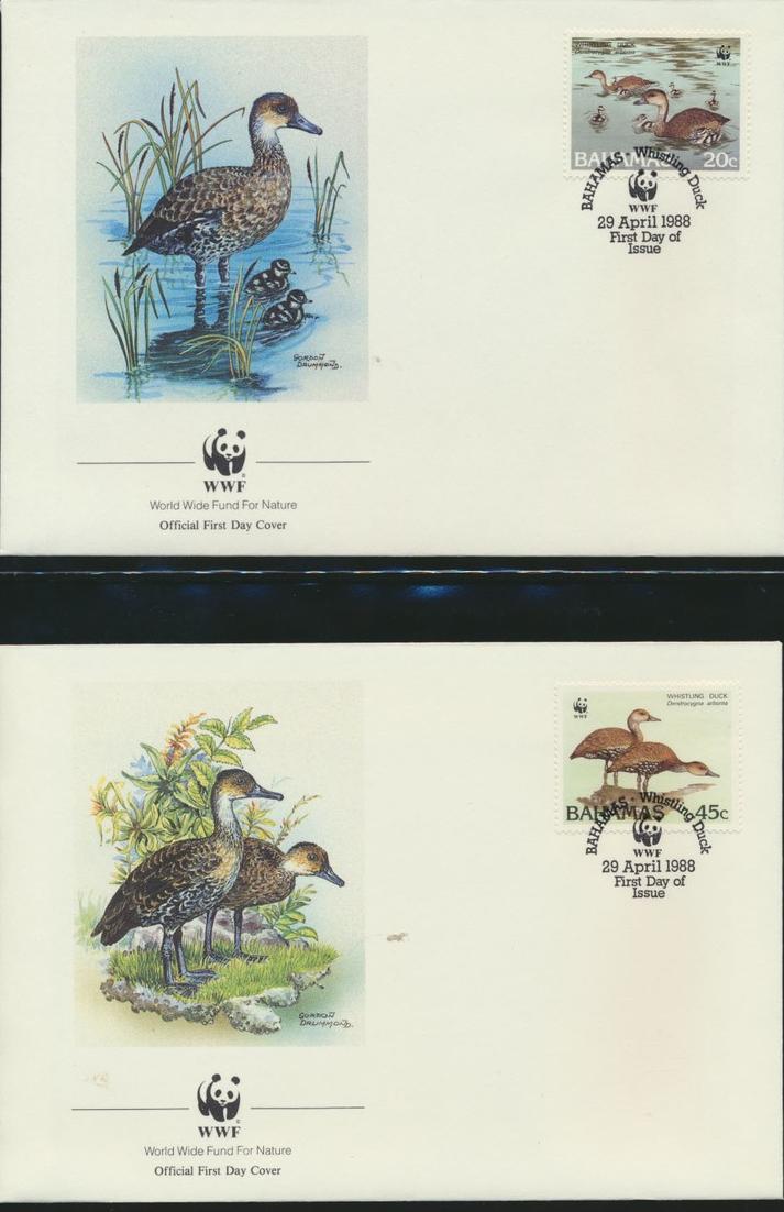 WWF Bahamas 672-675 Tiere Vögel Pfeifgans kpl. Kapitel bestehend 6