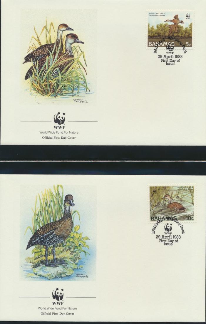 WWF Bahamas 672-675 Tiere Vögel Pfeifgans kpl. Kapitel bestehend 7