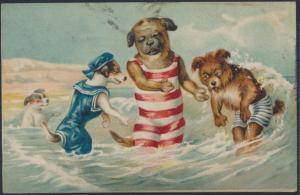 Ansichtskarte Personifizierte Hunde im Meer am Strand Zandvoort Vlissingen Tiere