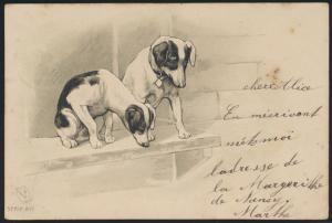 Ansichtskarte Künstler Prägekarte Tiere Hunde  1909